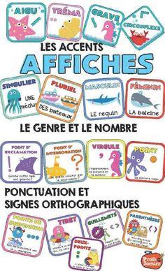Affiches pour réviser les signes orthographiques