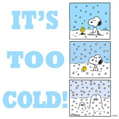 It's too cold! - Snoopy and Woodstock Snoopy Christmas, Charlie Brown Christmas, Charlie Brown And Snoopy, Christmas Cards, Peanuts Cartoon, Peanuts Snoopy, Peanuts Comics, Snoopy Love, Snoopy And Woodstock