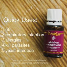 Melaleuca young living essential oil http://www.ylwebsite.com/SandyHowell/home