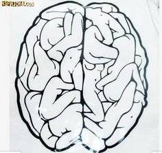 Brain of a dirty mind-Funny adult jokes and pictures
