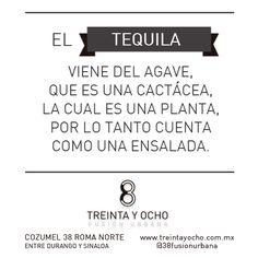 #comida #frases #food  #quotes #foodie #humor #restaurante #cocinaybar #cocinamasbar #chef #cocinar #drinks #bebidas #tequila #alcohol #ensalada