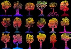 Trees in chromatic shade and zentangle