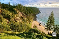 Enchanting Norfolk Island may be small in size, but it's huge on options. The island is a rewarding destination for those who make the journey to this remote corner of the Pacific Ocean. The post Norfolk Island Travel Guide appeared first on taste2travel.