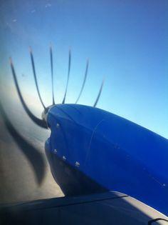 Aeroplane eyelashes!