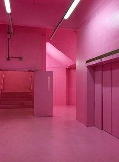 In the Pink Always a winner - Franks Campari Bar in good old Peckham