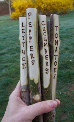 étiquettes de  jardin en branches pyrogravées