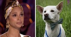 Rescue Dog On Britain's Got Talent Moves Judges To Tears I Love Dogs, Puppy Love, Ikea Napkins, Britain's Got Talent, Amazing Transformations, Braveheart, Proud Mom, Judges, White Dogs