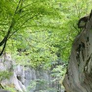 Cheile Banitei - Muntii Sureanu - Hunedoara