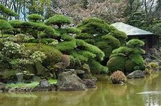 Image result for Japanese Topiary Japanese Landscape, Topiary, Golf Courses, River, Plants, Outdoor, Image, Outdoors, Topiaries