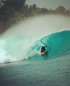Frankie surfing