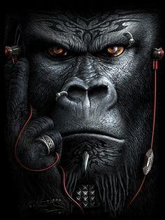 ... Absolutely Brilliant! ... Gorilla Tattoo, Lion Tattoo, Lion Wallpaper, Animal Wallpaper, Nature Wallpaper, Gorilla Wallpaper, Monkey Wallpaper, Download Wallpaper Hd, Monkey Art