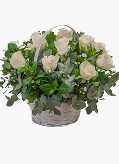 Gauteng Flower & Gift Delivery for all occasions. Whether you are looking for luxury or budget, our flower shops have what you are looking for. Sympathy Flowers, South Africa, Flower Arrangements, Plants, Gifts, Floral Arrangements, Presents, Plant, Favors