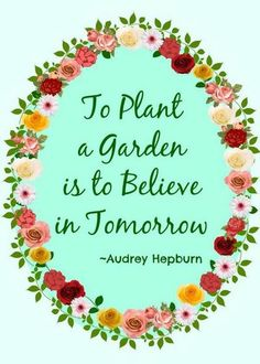 Anything and everything #AudreyHepburn: To plant a garden is to believe in tomorrow.