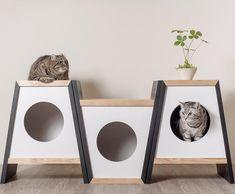 Living in Elegant, living in style. #猫のようにまったり優雅な生活は憧れですね . #エレガントハウス . . #猫 #ねこ部 #ねこら部 #ねこすたぐらむ #ふわもこ部 #ペコねこ部 #のらねこ部 #ねこ好き #ねこもふ団 #ねこばか… Pet Furniture, Handmade Furniture, Cat Litter Box Diy, Cardboard Cat House, Cat House Diy, Cat Room, Outdoor Cats, Space Cat, Dog Houses