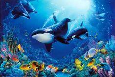 Killer whale artwork