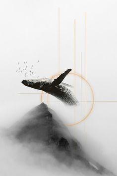 Whale #collage #photomanupilation #illustration