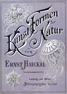 Kunst-Formen der Natur, by Ernst Haeckel, 1898. This is a wonderful book, in the public domain, which features all sorts of illustrations of the natural world.