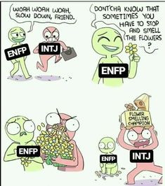 Intj Enfp, Entp, Enfp Personality, Myers Briggs Personality Types, Mbti Charts, Fb Memes, Psychology, Quotes, Funny Memes