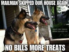 No bills, more treats? They've got it all worked out, haven't they... #funny #dogs