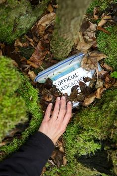 Official geocaching box - Getty Images/ra-photos/E+