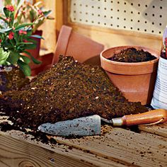 Not all potting soil is created equal, learn the dos and don'ts to help your plants thrive.