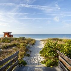 Sarasota, Florida: Cultured, creative, and cool, this white sand–blessed Florida town is ready for prime time.By Tracey Minkin