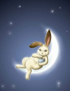 bunny and moon