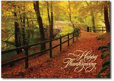 Autumn Trail Happy Thanksgiving Holiday Cards - by THE OFFICE GAL