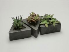 Triangle Concrete Pot Set   The triangular concrete planters handcrafted in the USA by Rough Fusion.   Available on CUTmodern.