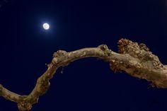 Fotografía Nocturna por Maria Diez en 500px