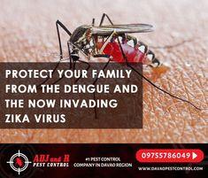 Best Pest Control, Zika Virus, Davao