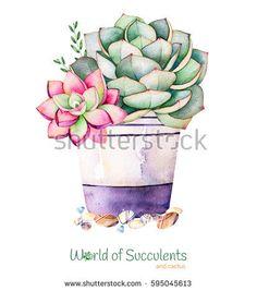 Watercolor Handpainted Succulent Plant Pot Pebble Stock Illustration 595045583