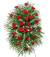 Classic, fresh-cut red roses with accents of eucalyptus and other fresh foliage are featured in this beautifully-traditional spray. Let Enchanted Florist & Gifts LLC deliver a lovely floral expression of sympathy and reverence for you. Funeral Floral Arrangements, Flower Arrangements Simple, Charlotte Nc, Daisy Wedding, Wedding Flowers, Red Flowers, Red Roses, Flower Shop Network, Funeral Sprays