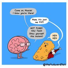 The Awkward Yeti - Fat and Muscle Akward Yeti, The Awkward Yeti, Funny Cute, The Funny, Heart And Brain Comic, Funny Jokes, Hilarious, Science Memes, Workout Memes