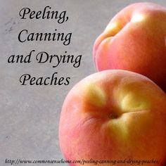 Preparing peaches for storage via canning and drying. How to peel peaches, how to can peaches, how to dehydrate peaches.