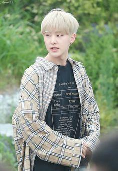 Star In Japanese, Choi Hansol, Won Woo, Hoshi Seventeen, Adore U, Seventeen Wallpapers, Pledis 17, Pledis Entertainment, Korean Music
