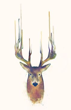 Deer \\ Steadfast Art Print by Amy Hamilton