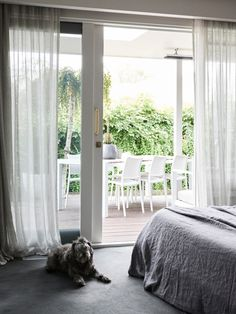 Escape Velour carpet in 'Zoom' from Supertuft is on the floors, with Dulux 'Pipe Clay' (half strength) to walls and Sheer curtains in James Dunlop Laconia 'Silver', Highfield Furnishings. Dulux Paint Colours White, White Washed Floors, Carpet Decor, Carpet Ideas, Feminine Decor, Cheap Carpet Runners, Fabric Houses, The Design Files, Patterned Carpet
