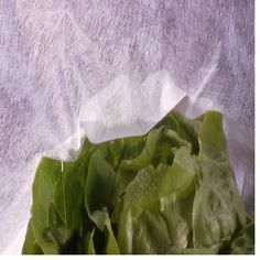 Folie Microporoasa Novaagril, 23gr/mp Lettuce, Cabbage, Vegetables, Madness, Vegetable Recipes, Cabbages, Salad, Collard Greens, Sprouts