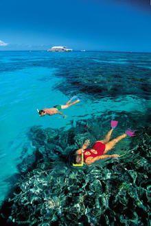 Swim, snorkel and dive Australia's Great Barrier Reef