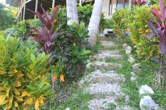 trail surf vista villas  - Costa Rica