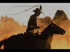 Wildfire, the Story of a Horse - Full Western Movies