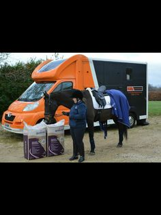 Jack approving Caviera bedding at training January 27th 2015