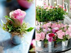 Flower market in Paris - pink roses...