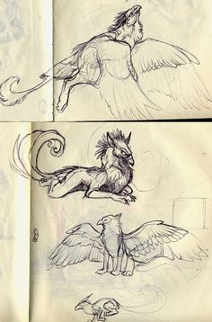Creature Drawing gryphs by Novawuff on deviantART - Animal Sketches, Animal Drawings, Drawing Sketches, Art Drawings, Mythical Creatures Art, Mythological Creatures, Fantasy Creatures, Creature Concept Art, Creature Design