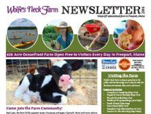 Preserving the Past, Cultivating the Future | Wolfe's Neck Farm