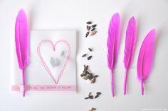 blick7: Sonnenblumenkerne im Papierherz