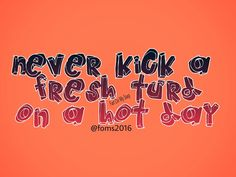 Never kick a fresh turd on a hot day.  Never EVER!