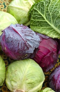 By Using The New And Improved Cabbage Soup Diet You Can Lose 30 Pounds In 30 Days. The best method in Absolutely safe and easy! Cabbage And Beef, Red Cabbage Salad, Cabbage Soup Diet, Green Cabbage, Cabbage Patch, Cabbage Rolls, Cabbage Recipes, Lose 30 Pounds, 10 Pounds