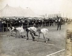 George Poage, second from the right, in the first heat of the 60-meter run. Poage was the first African American to medal at the Olympics. Photo by Jessie Tarbox Beals (attributed), 1904. Missouri History Museum.